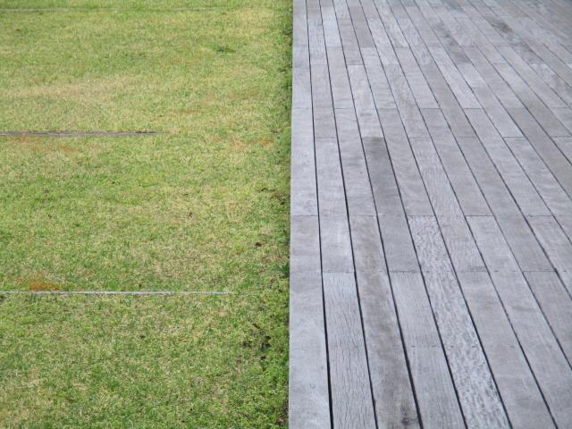 マンション1階の専用庭の芝生