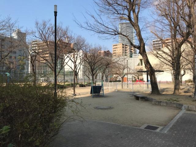 花乃井公園と花乃井中学校
